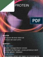protein terasi
