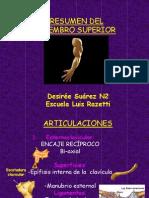 Anatoma Del Miembro Superior 1228585512661504 8