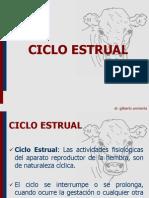 CICLO_ESTRUAL