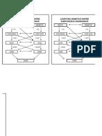 Tabel cu legătura genetică dintre clasele de compuşi anorganici