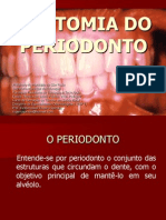 _anatomia Do Periodonto
