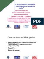 apresentacao_goiania.pdf