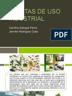 Plantas de Uso Industrial