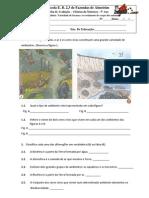 Ficha de avaliação CN1