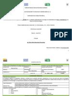 Formato Eca Temas de Fisica 2013