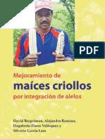 Maices Criollos