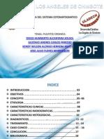 Pulpitis Cronica Patologia II (1)
