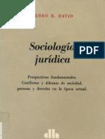Sociologia Juridica - Pedro R. David