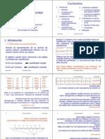 07 cuantificacion_escalarx4