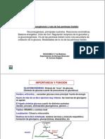 pentosa fosfato.pdf