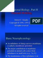 basic neurophysiology