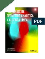Aldana Principios de Geometria Analitica y Algebra Lineal