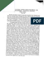 STABLEIN Ceremonial Medicine.pdf