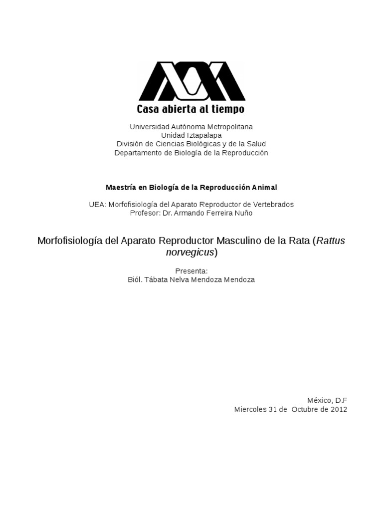Morfofisiologia Del Aparato Reproductor de La Rata