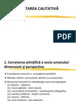 CercetareCalitativa_1st