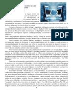Efecte ale introducerii informatizării în cadrul firmei/organizaţiei