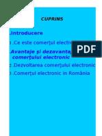 comertul electronic