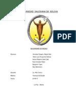 monografiacompletaseguridadenredes-111028211717-phpapp01