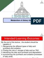 Metabolism of dietary lipids