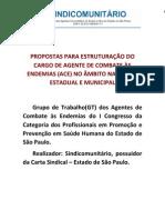 Propostas para Estruturação do Cargo de ACE 30_1-2_12_2012