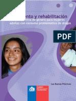 CONACE - (2006) Proyectos de tratamiento y rehabilitación con perspectiva de género para mujeres adultas
