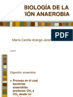 anaerobiosis.ppt