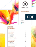 DP_KinoK_2013_V2.0
