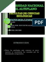 63461012-ENFERMEDADES-PECES-MARINOS.pdf