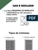 02-COLMEIAS E NÚCLEOS