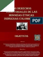 LOS_DERECHOS_TERRITORIALES_DE_LAS_MINORAS_TNICAS_INDGENAS.pptx
