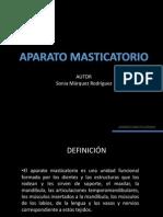 aparato masticatorio CSO