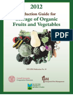 Production Guide for Storage of Organic Fruits and Vegetables.