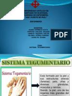 Sistema Tegumentario Enfermeria