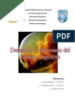 Desarrollo Embrionario Del Aparato Digestivo