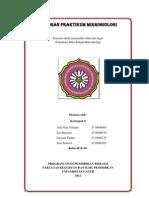 Laporan Praktikum Mikrobiologi
