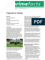 Pasture for Horses