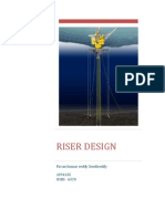 Riser design Project report
