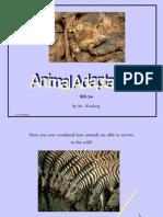 Animal-Adaptations Powerpoint