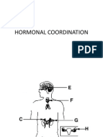 HORMONAL COORDINATION