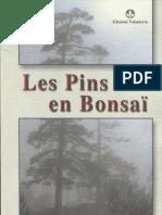 Les Pins en Bonsai- French