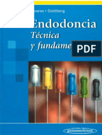 Endodoncia Tecnicas y Fundamentos