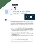 Capt 1 Sistemas de Ecuaciones Lineales y Matrices