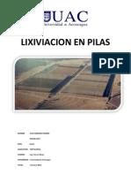 Lixiviacion en Pilas