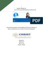 Internship (1) Copy