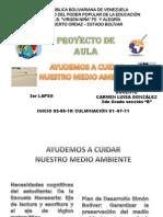 Proyecto Del 3er 2011