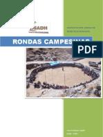 rondas_campesinas.pdf