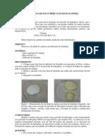 atividade de catalase em tubérculos de batatinha