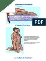 58521744-Psts-sex-detaillees.pdf