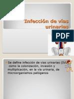 Infeccin de Vas Urinarias