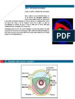 Presentación motor wnkl